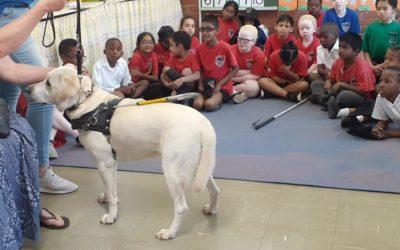 SA DOG FOUNDATION VISIT