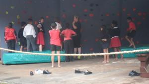 wall-3